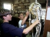 Students examine a skeleton